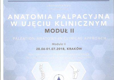 Certyfikat palpacyjna